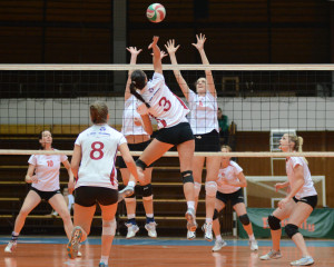 Granite State Games Volleyball